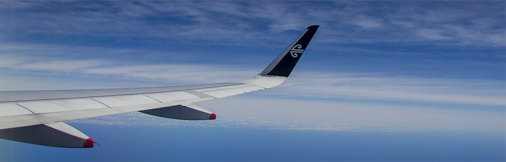 Airplane wing 1000x320