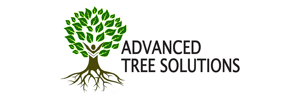 Advanced Tree Solutions 1000x320