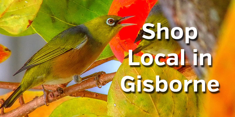 Shop Local in Gisborne