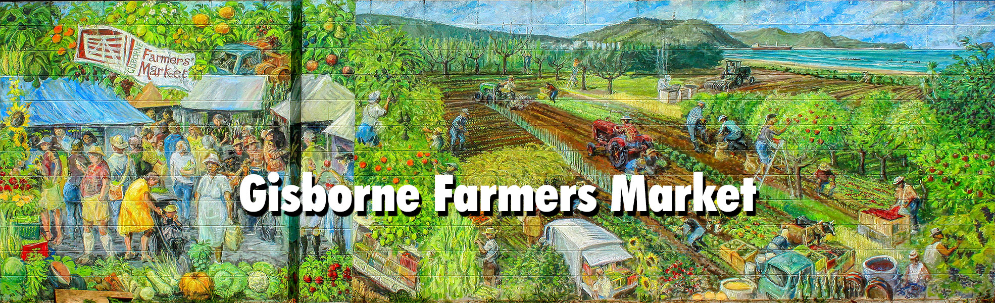 the Gisborne Farmers Market